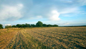 Land for Sale Grantham