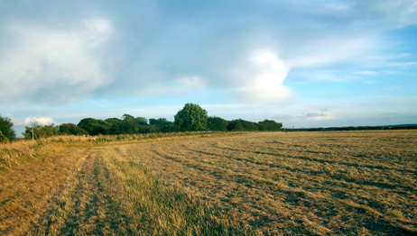 Land for Sale in Grantham
