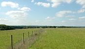Land for Sale near London