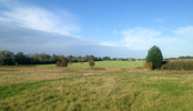 Land for Sale Newbury, Berkshire